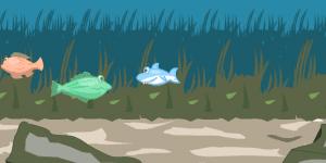 Hra - A Little Shark