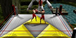Hra - Hyrule boxing challenger