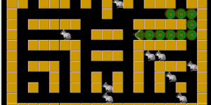 Hra - Snake Rabbit